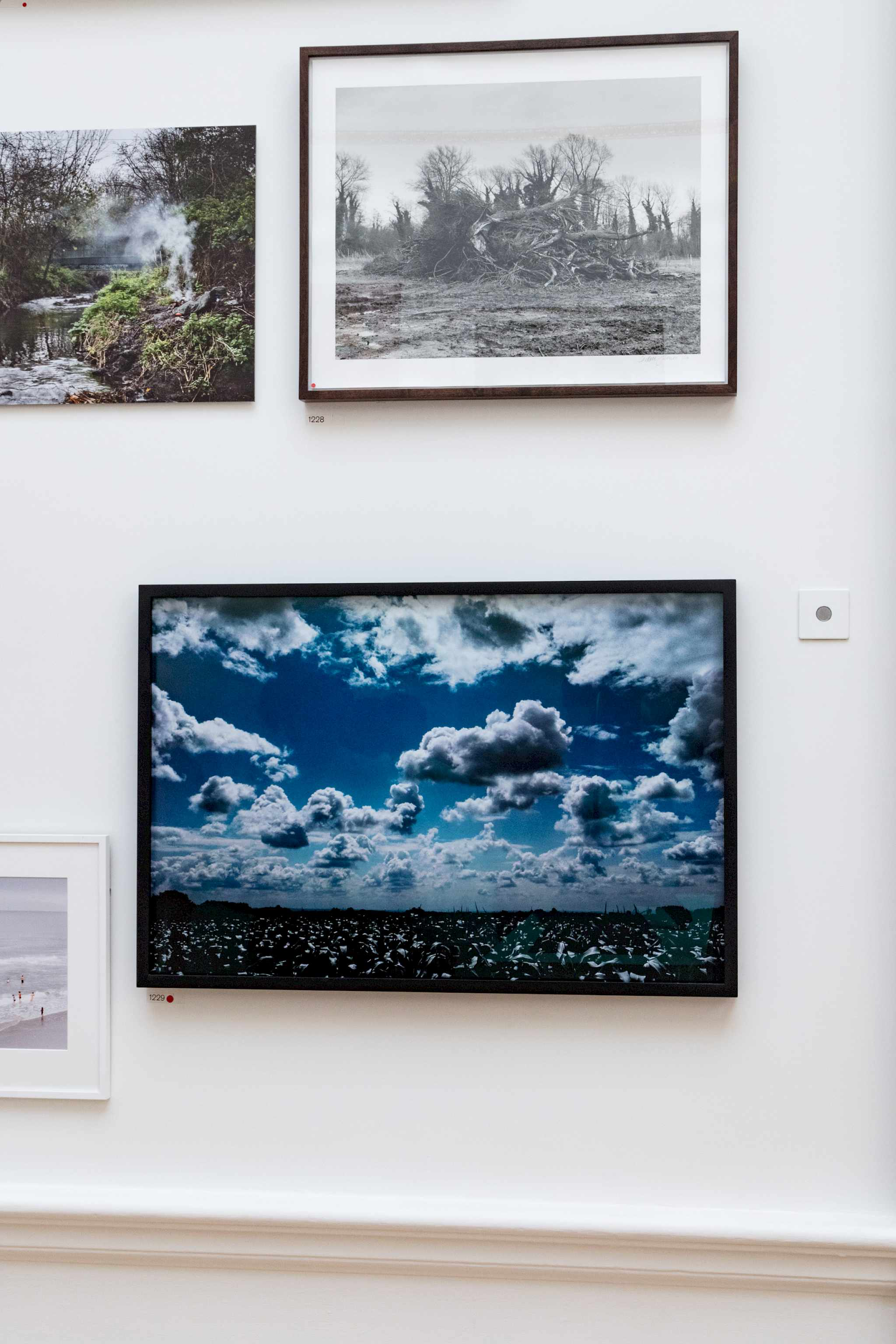 Installation view, photograph by Scott Mead